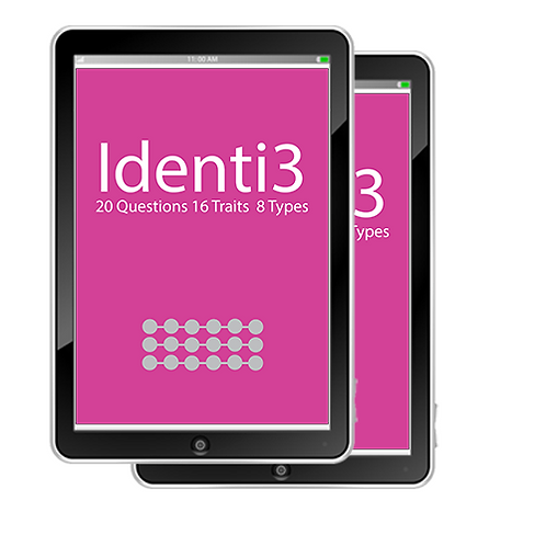 Profiling: Identi3 Bundle Reports (Basic + Leadership Report)