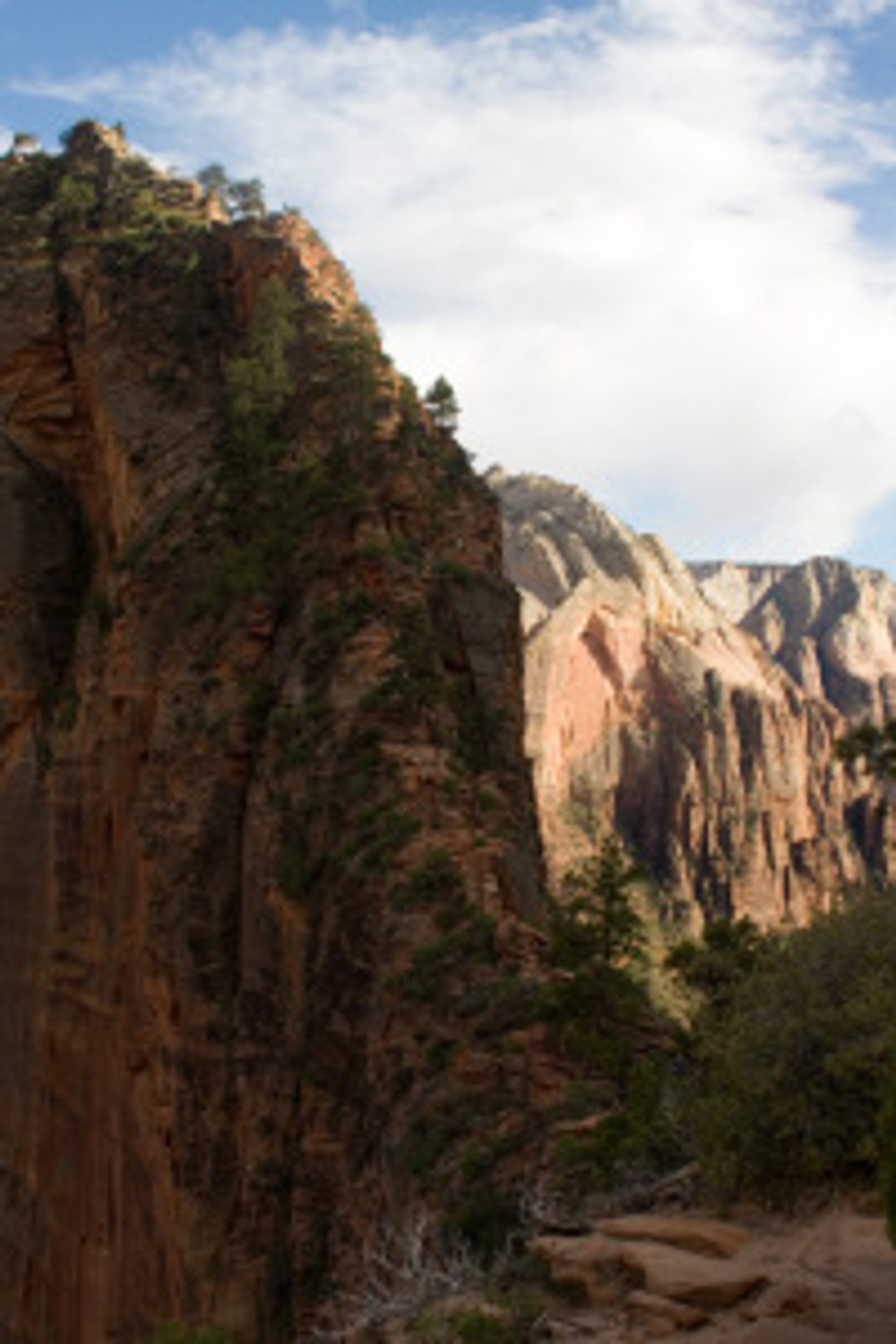 View of Angels Landing from Scout Lookout