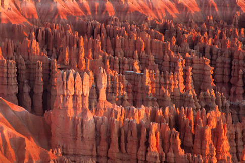 Hoodoos in Bryce Ampitheater, Bryce Canyon National Park
