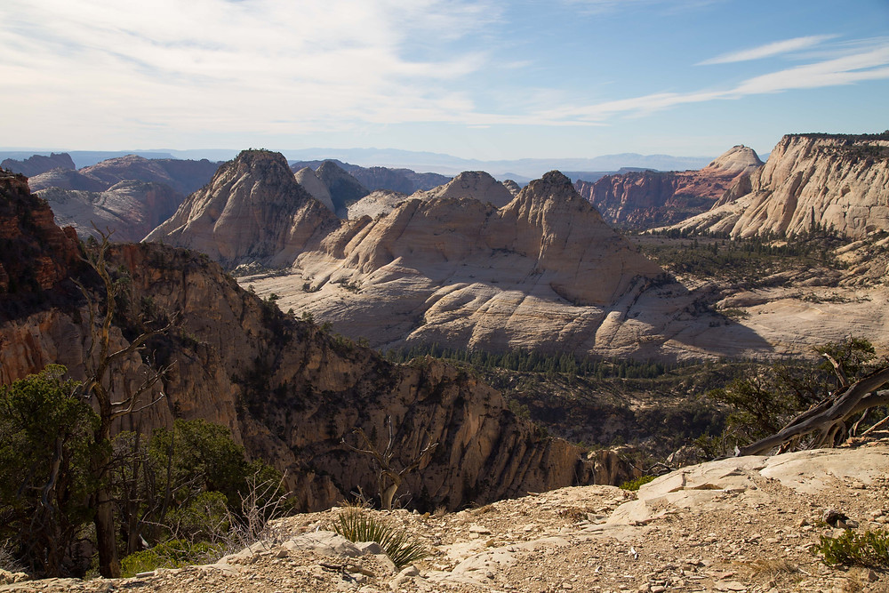 The West Rim Trail in Zion National Park, Utah provides some of the greatest views in the park