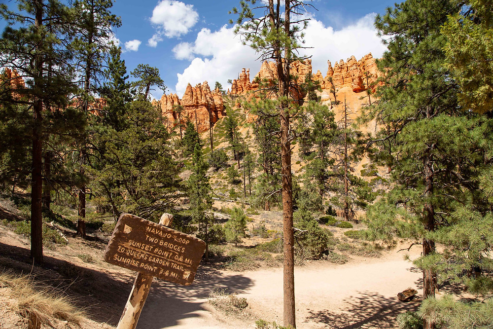 This sign marks the junction between the Navajo Loop and Queen's Garden Trail in Bryce National Park, Utah