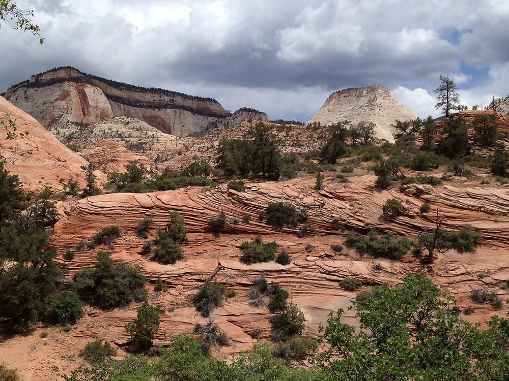 Scenery in Zion National Park Utah