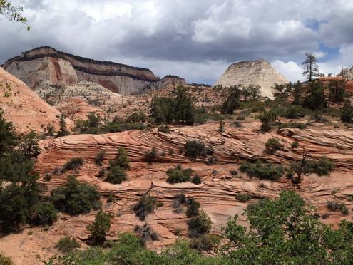 Upper Zion Canyon, Zion National Park