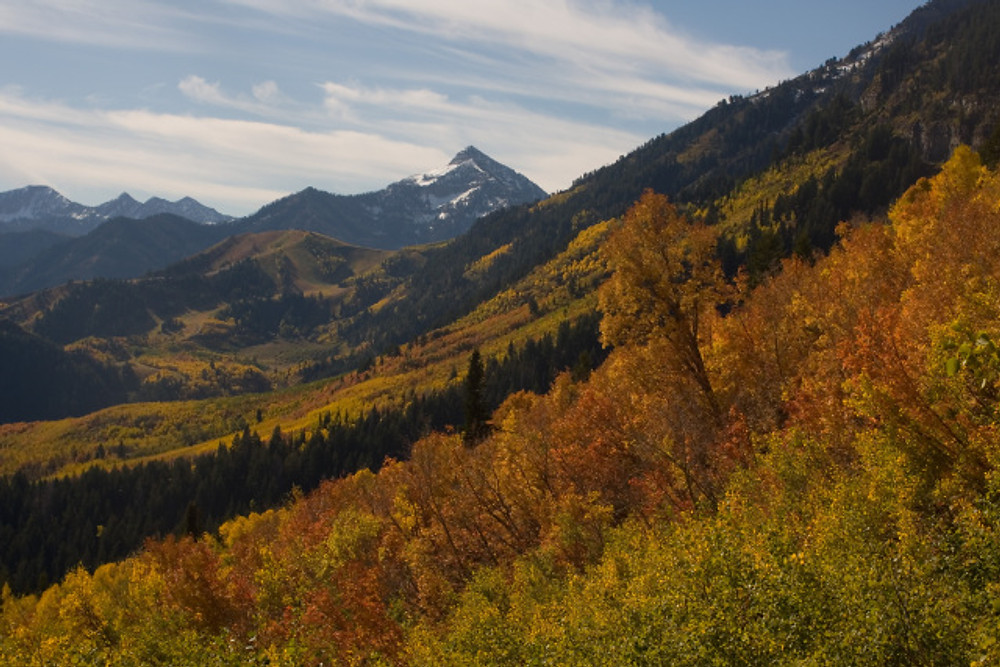 View of American Fork Canyons as you pass the Summit Trail on the Alpine Loop Road