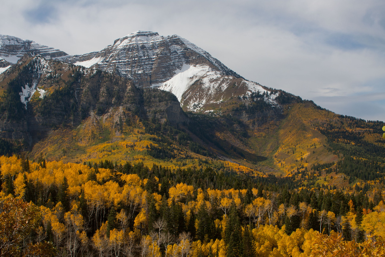 Fall in American Fork Canyon
