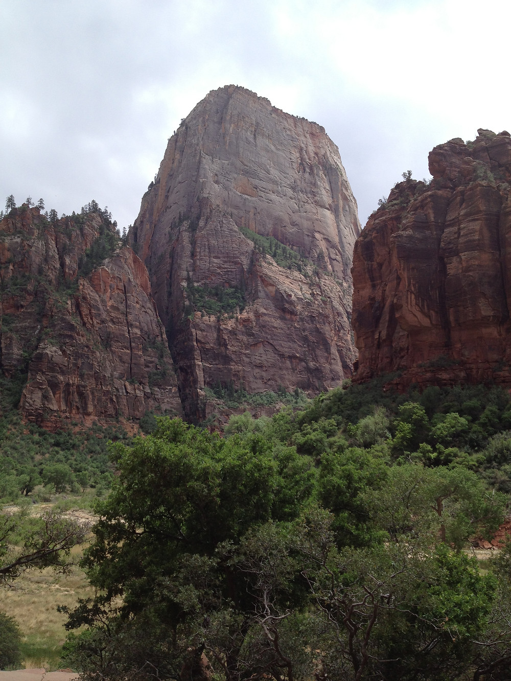 The Great White Throne is best scene from the Big Bend Shuttle Stop in Zion National Park, Utah