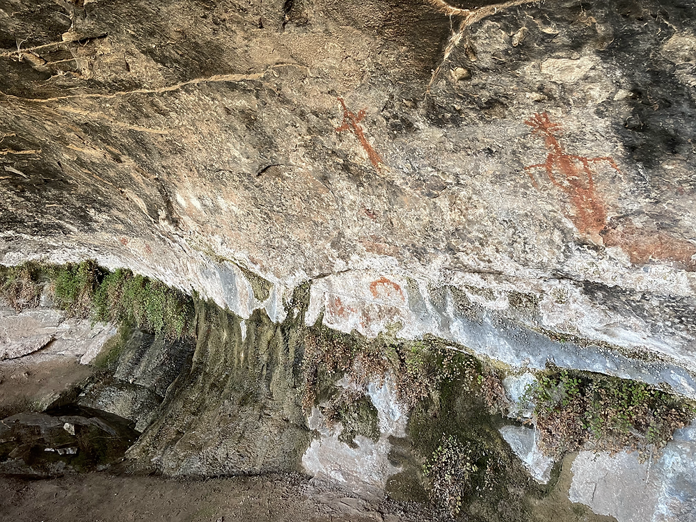 These pictographs are a few of many that can be found in the shaded alcove of Cave Springs in the Needles District of Canyonlands National Park, Utah
