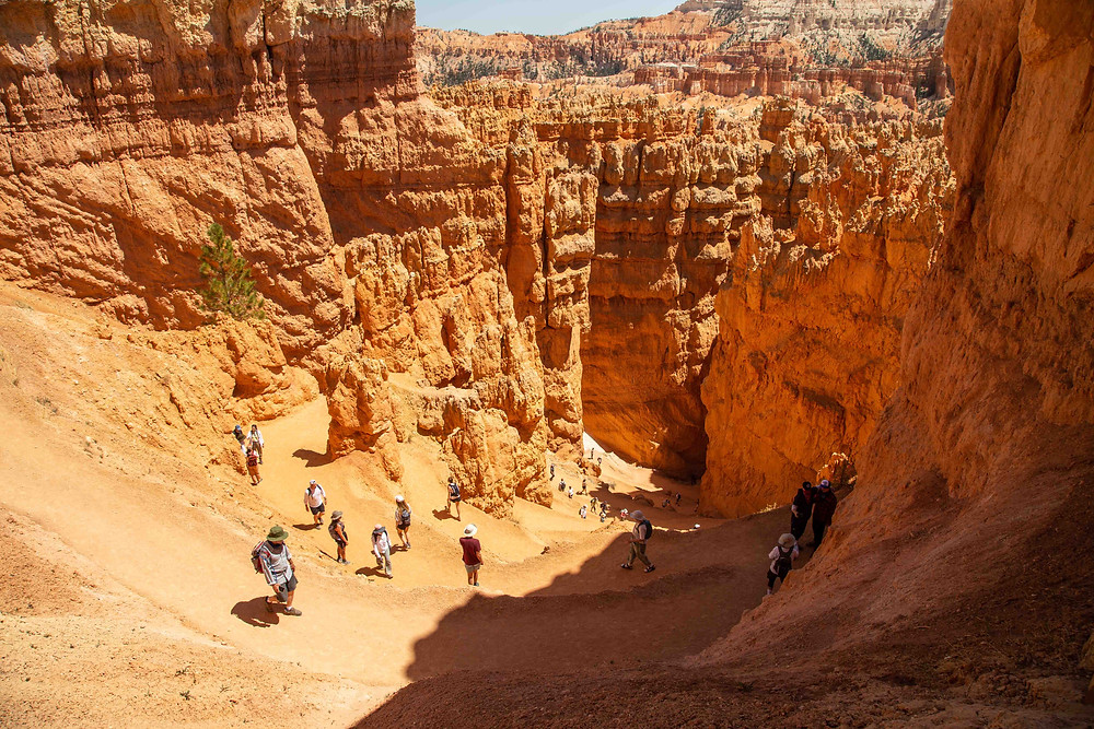 Hikers descend these Switchbacks on the Navajo Loop Trail in Bryce Canyon National Park in Utah