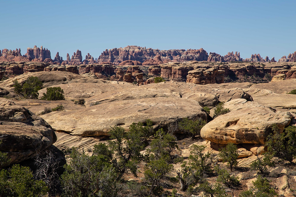 Pothole Point Trail provides a great view into the Needles that make up Canyonlands National Park, Needles District in Utah