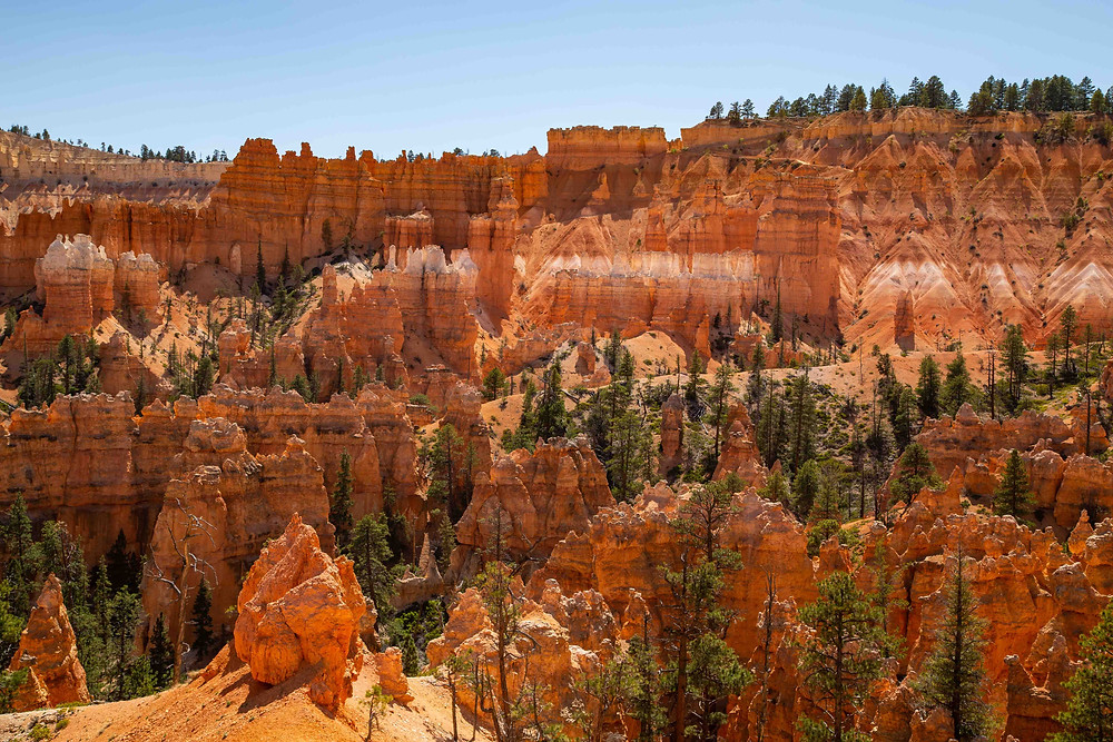 View of the Bryce Canyon Amphitheater from the Queen's Garden Hike in Bryce Canyon National Park, Utah