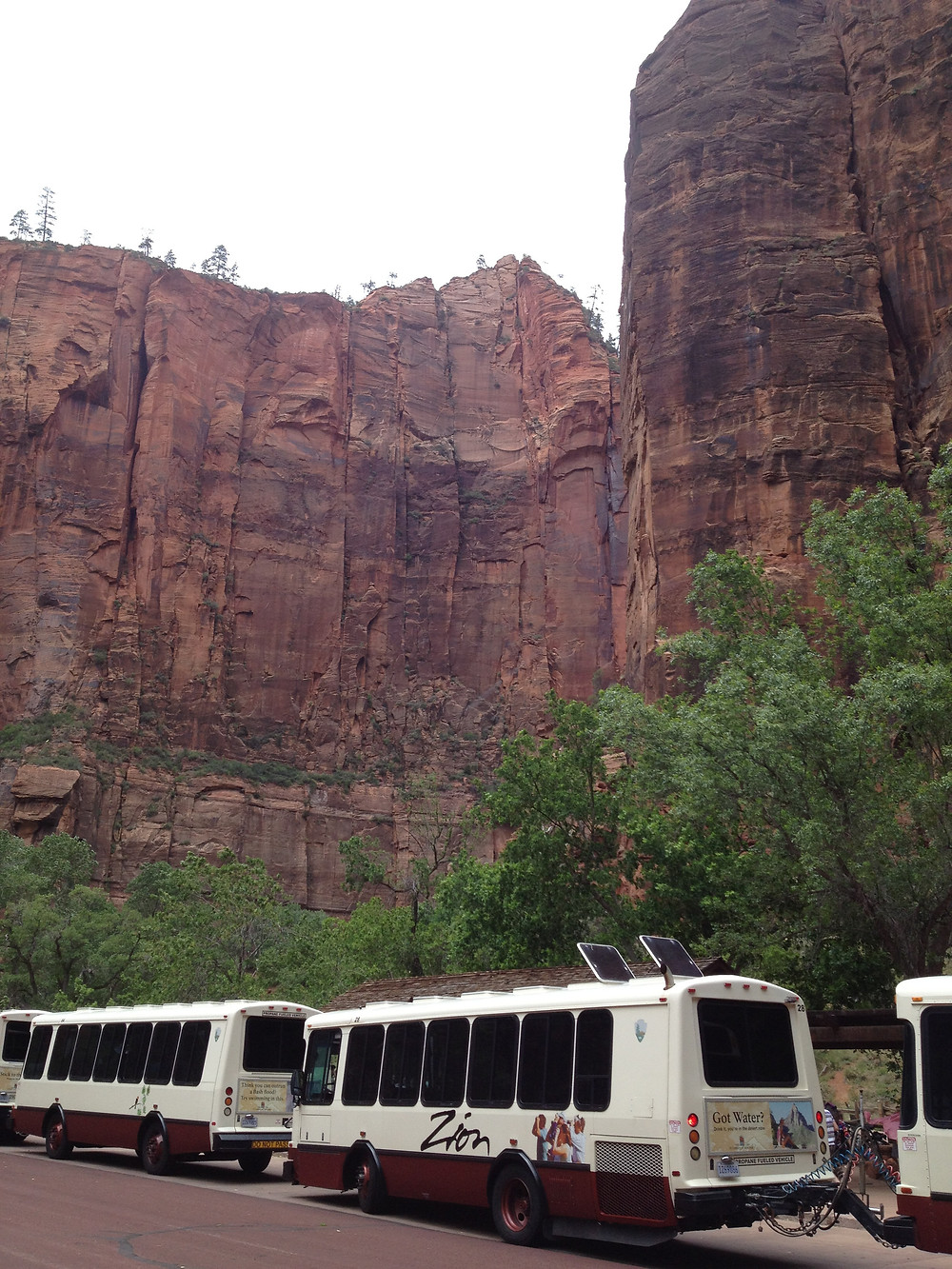 Zion National Park uses shuttles to help visitors access the park from Spring to Fall