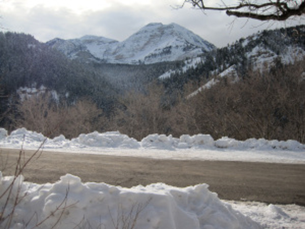 View from Pine Hollow Trail head in American Fork Canyon