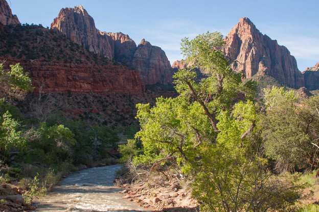 The Watchman and the Virgin River, Zion National Park