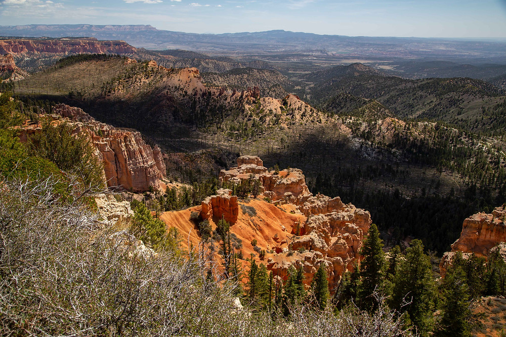 View of the Canyon Below from Piracy Point, Bryce Canyon National Park, Utah