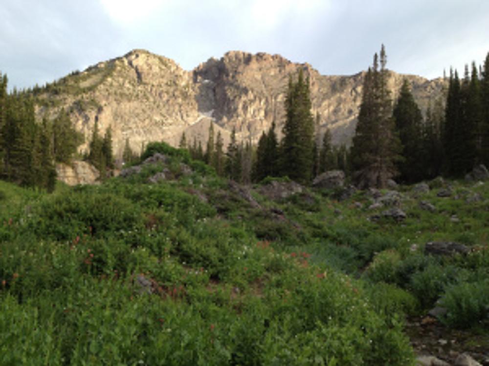 Peaks near Cecret Lake, Little Cottonwood Canyon, Alta Utah