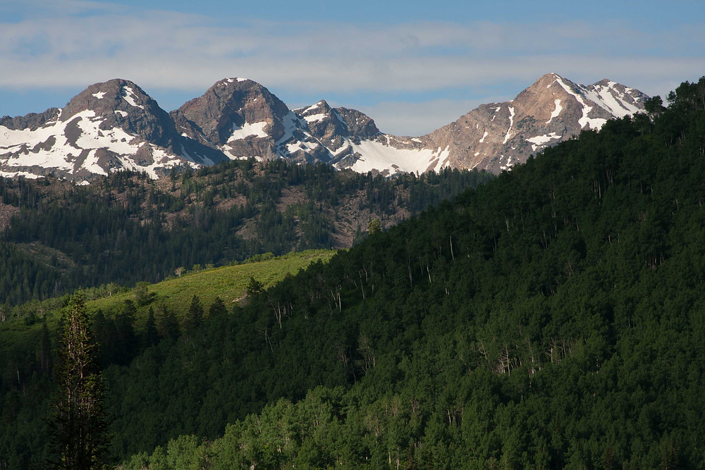 Great view of the peaks along Millcreek and Big Cottonwood Canyon can be seen from the trail