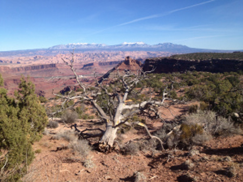 Dead Horse Point State Park Big Chief Loop Mountain Bike Trail