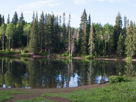 2 Trails, 1 Destination - Dog Lake between Big Cottonwood and Millcreek Canyon