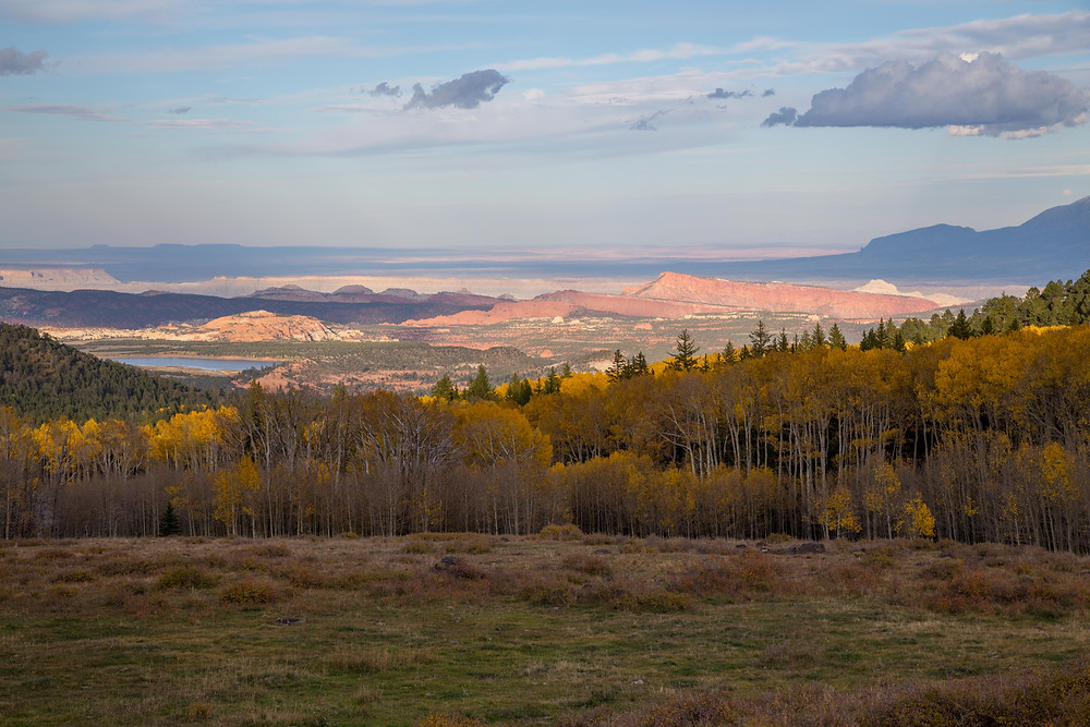 View near the summit of Highway 12 in the Boulder Mountains on the way to Escalante, Utah