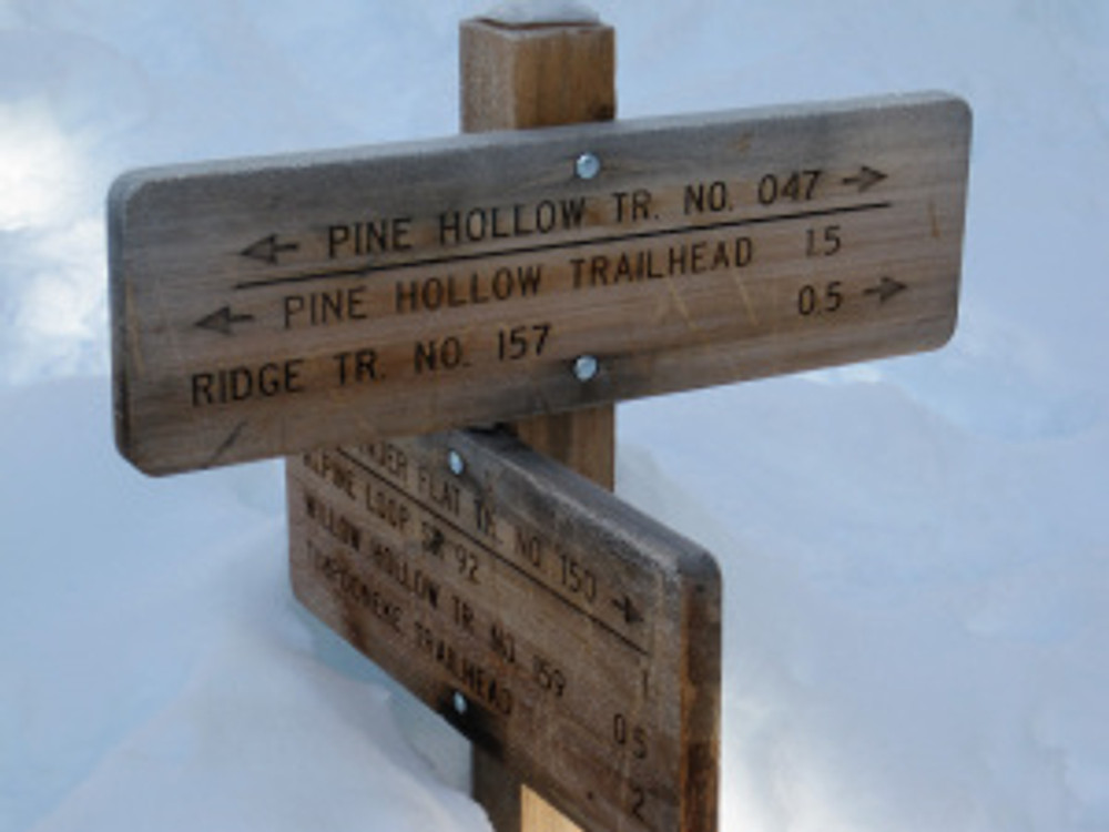 Pine Hollow Trail Options, American Fork Canyon