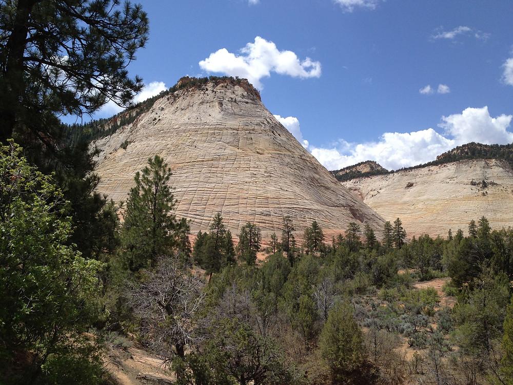 Mt Carmel Highway goes through Zion National Park in Utah