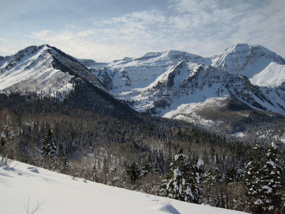 Ridge Trail American Fork Canyon
