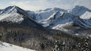 Pine Hollow – A Snow Shoe Adventure for Everyone