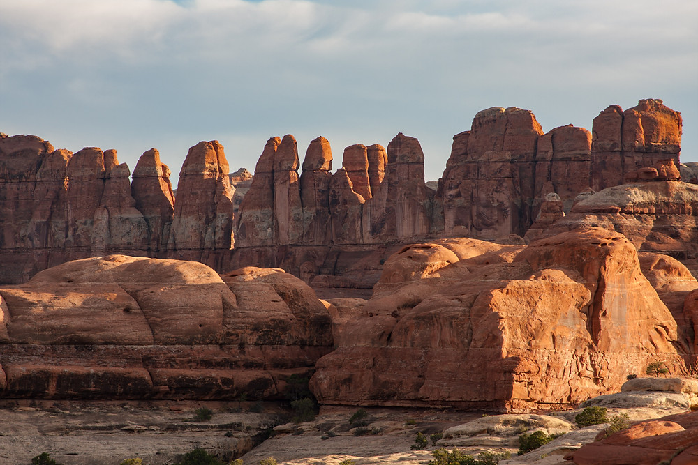 Sandstone Needles in the Needles District of Canyonlands, Utah