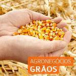 Banner-20Agronegocios-20graos-20353x353.