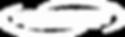 Logo Tecnopaint Branca.png