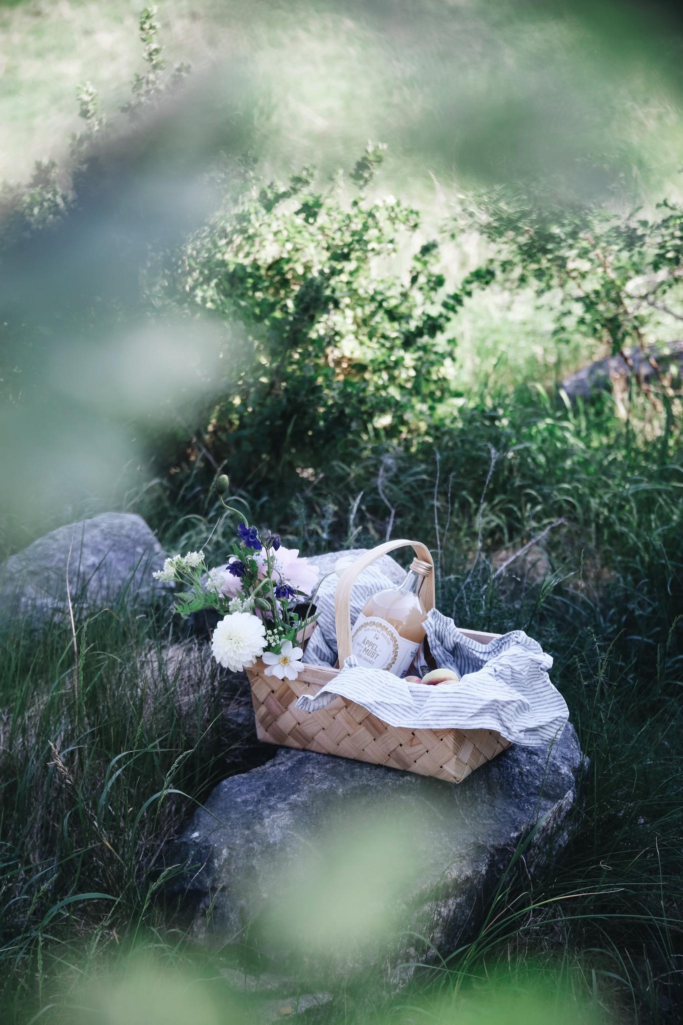 Anna_Kubel_picknick2