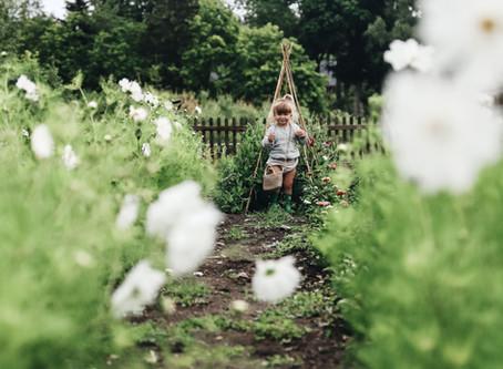Bland blommor och blader!