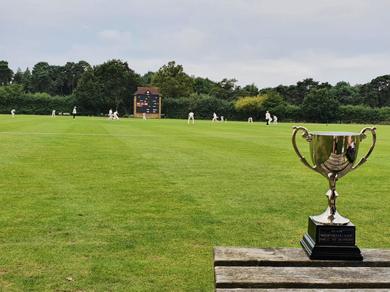 Thrilling one wicket defeat at Shenley