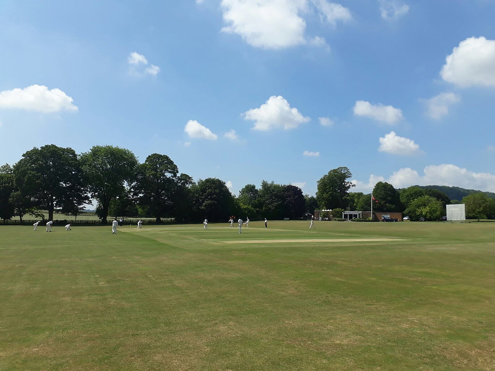 Hampshire Hogs v Jesters at Warnford