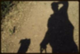 Dog Walking| Oakland| California