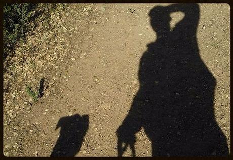 Dog Walking  Oakland  California