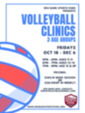 Volleyball Clinics.png