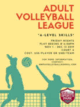 Adult Volleyball League.png