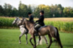 Members in the field