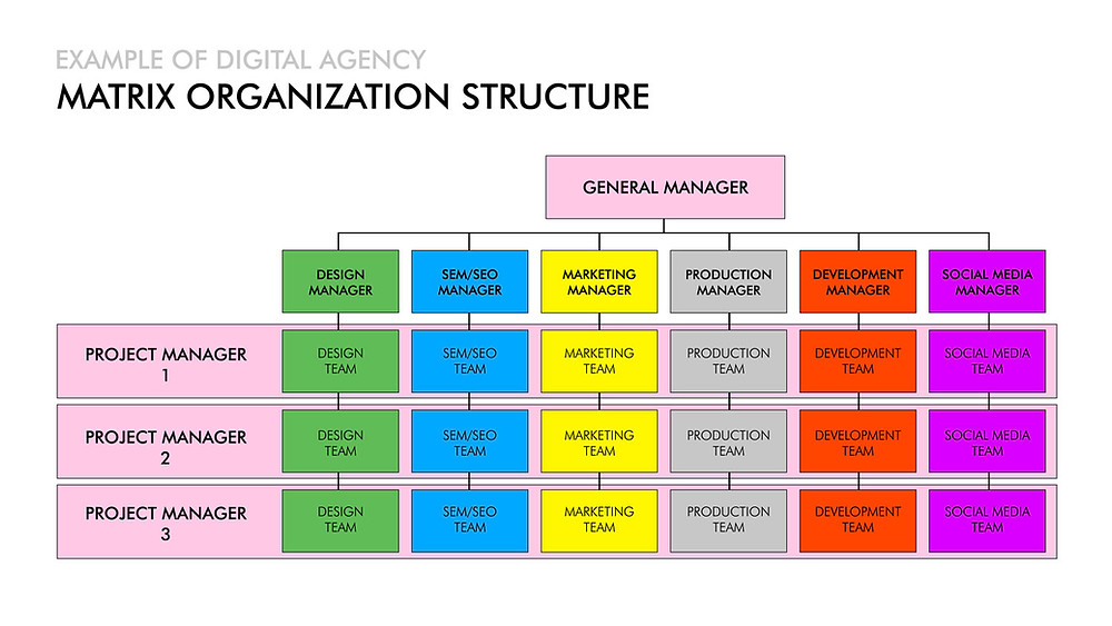 Digital agency matrix organization structure