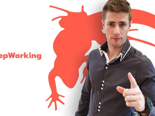 Digital Marketing Manager - Lounge Lizard