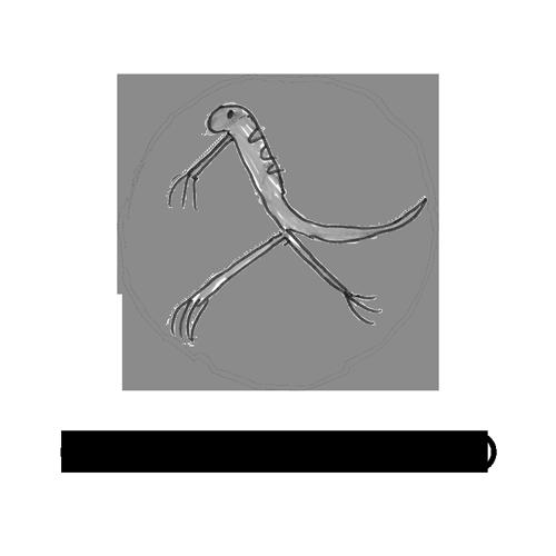 Chick'n'Mango logo