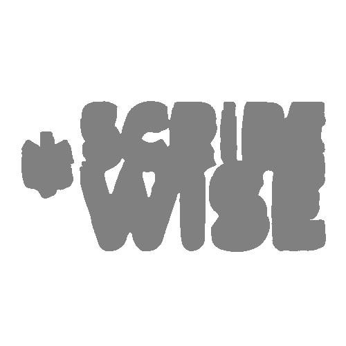 ScribeWise logo