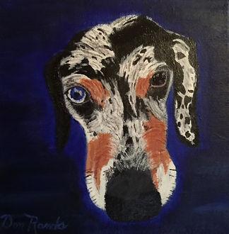 Don Rands' portrait closeup of Daisy