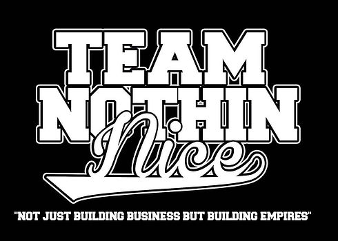 This image is the official logo for the brand of Team Nothin Nice