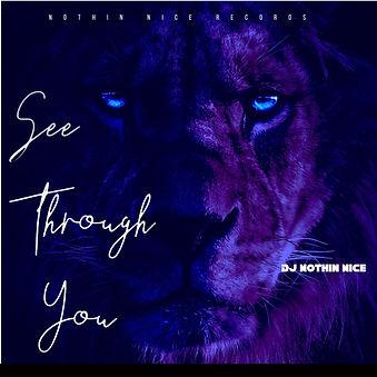 Dj Nothin Nice - See Through You.jpg
