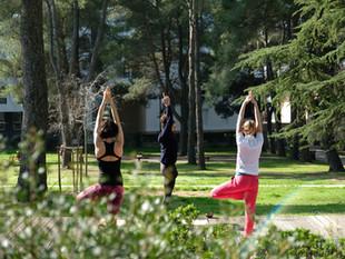 Juillet 2021 : Mercredis Yoga au parc