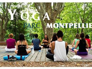 YOGA Plein air Dimanche (28/03) -  Montpellier