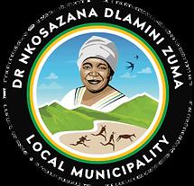 NDZ Logo.png