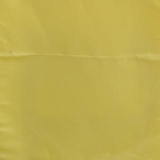 Nyeleti Events Table Cloth and Napkin Sample 9